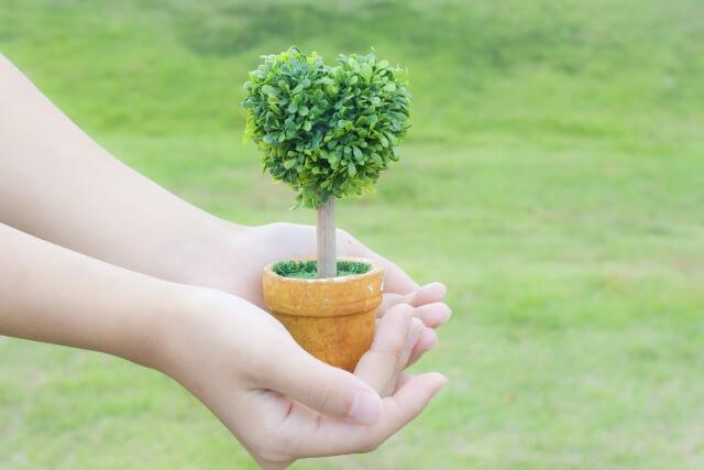 茨木市で造園を依頼するなら~歴史ある街に相応しい植栽をご提案~