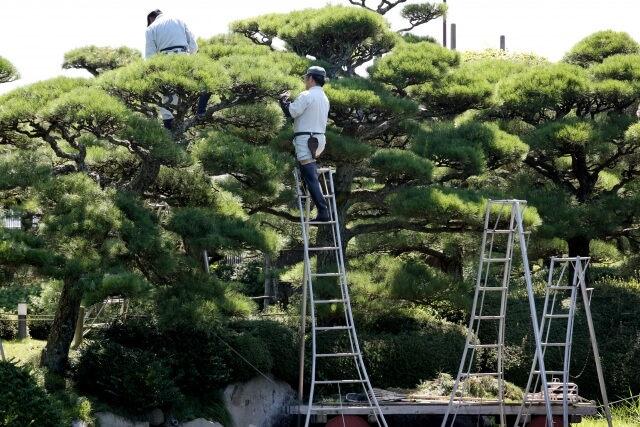 箕面市で外構工事をお考えの方へ~素敵な庭をプロの技術で実現します~
